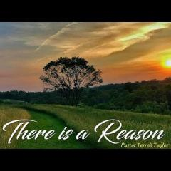 There is a Reason
